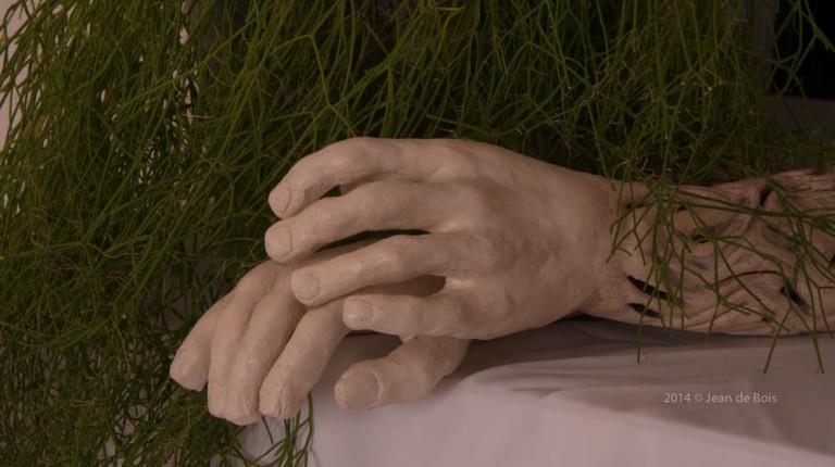 Handen & Armen (1 van 1)