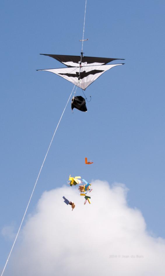 Vlieger (1 van 1)