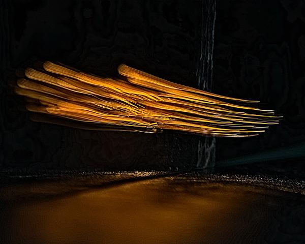 DSC_6599 Lighting