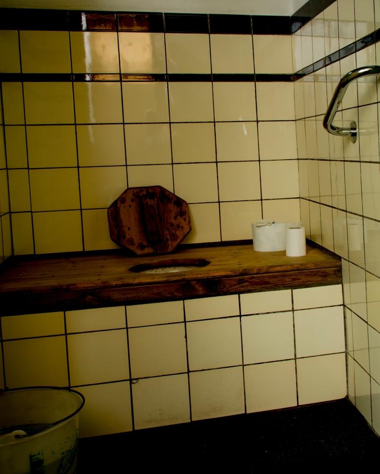 DSC_8780 Toilet