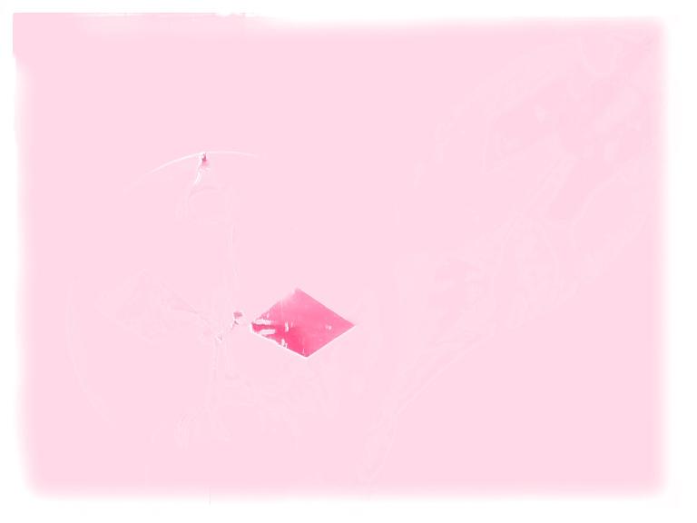 P1110083 Pink